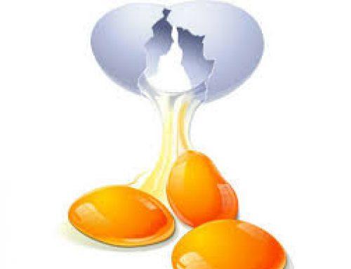 Kako prepoznati sveže jaje